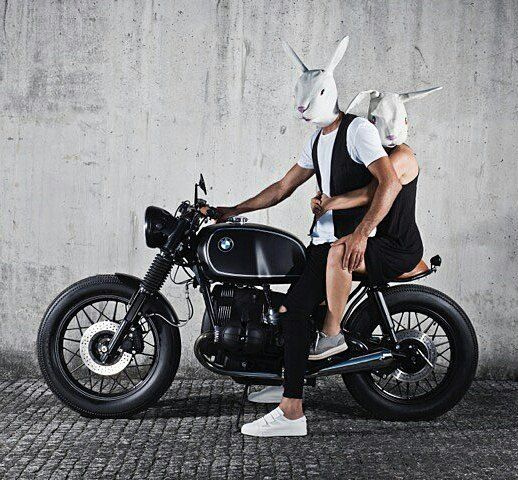 By @iambunnyadventures –  Welcome to the adventures of. The traveling bunny 🐰  project 📷@joaocarlosphoto  bunny riding his custom @banditgarageportugal